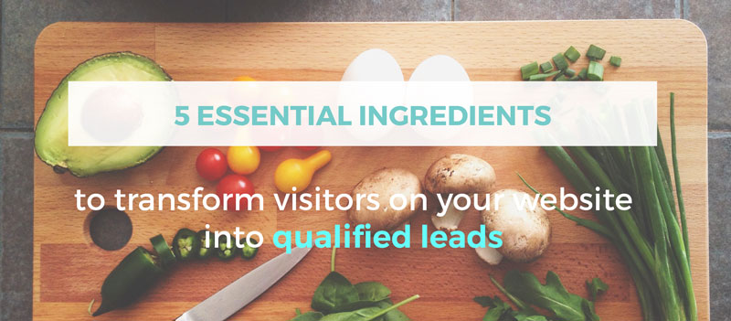 The 5 Essential Ingredients to Transform your Website Visitors into Qualified Leads!